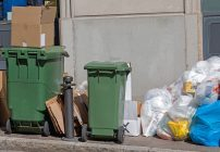 Improve your Los Angeles Business Appearance by Removing Unsightly Debris